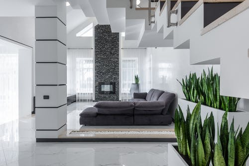 Modern villa interior with spacious living room with comfy sofa decorated with fresh green houseplants growing in pots placed near staircase