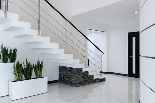 Green potted houseplants placed near staircase in spacious mansion