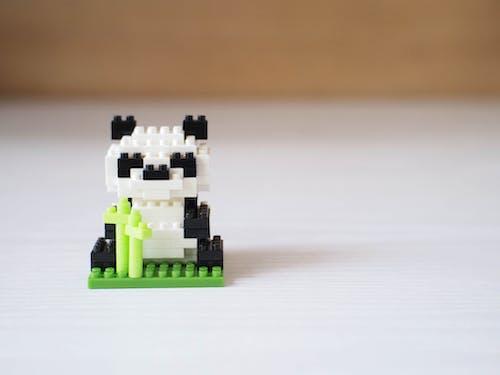 Free stock photo of animal, bear, black, black and white