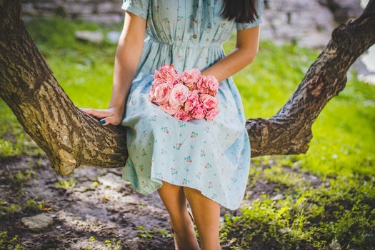 Free stock photo of wood, person, woman, flowers