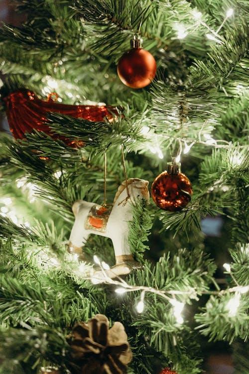 Fotos de stock gratuitas de adornos, adornos de navidad, adornos navideños
