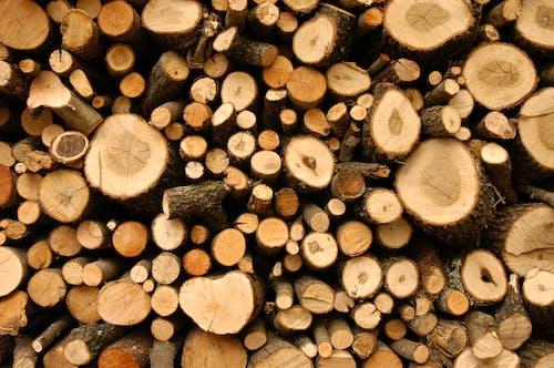 切, 切碎的木頭, 升火的木柴, 吠 的 免費圖庫相片