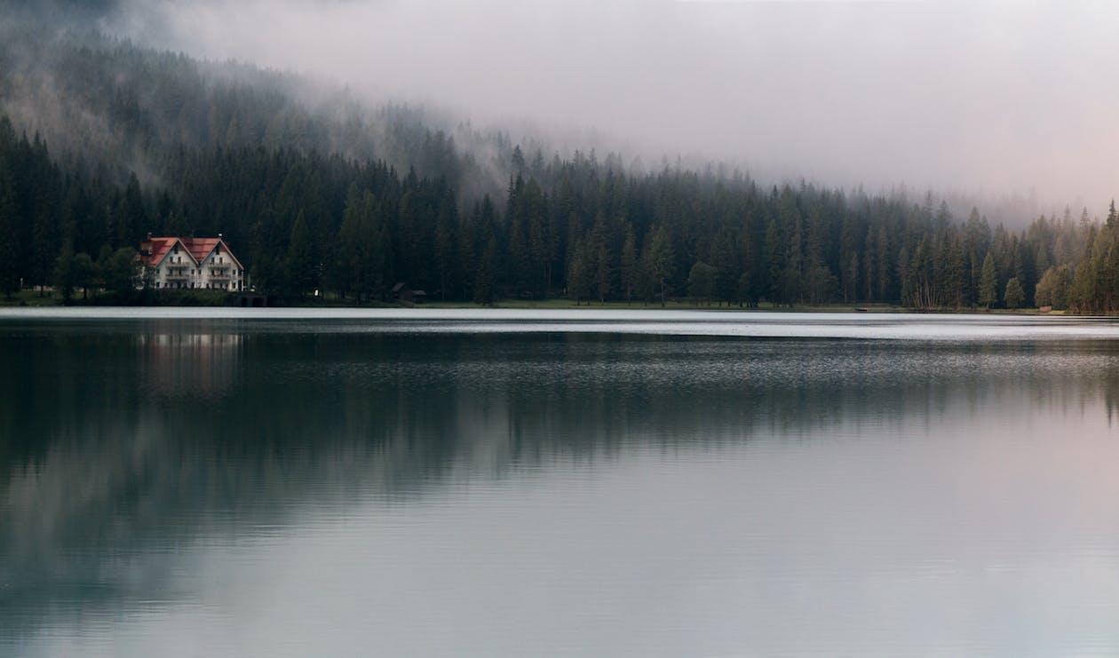 берег озера, відображення, вода