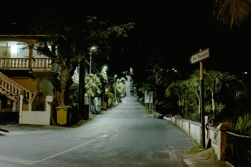 Narrow road among trees in night city