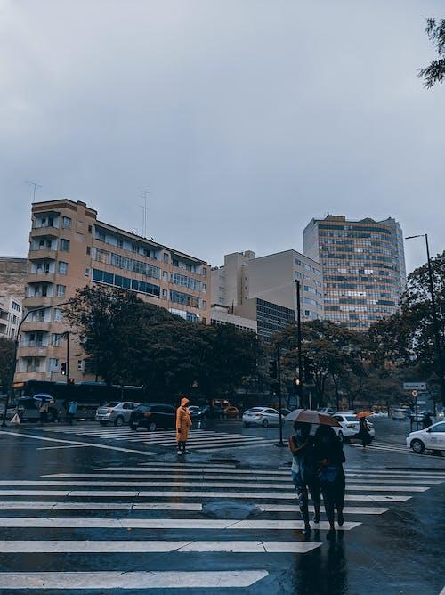 交通, 商業, 城市, 女人 的 免費圖庫相片
