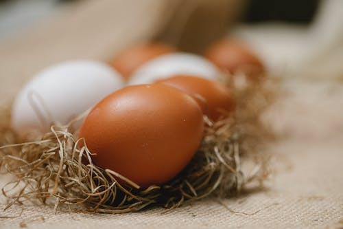 Fresh chicken eggs placed in straw on table with cloth in soft focus