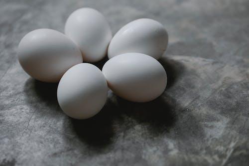 검은 색 섬유에 흰 계란 2 개