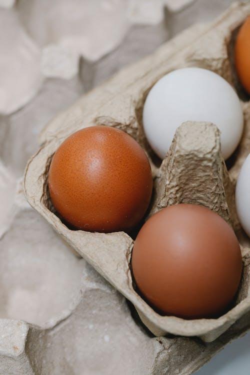 Коричневое яйцо на подносе для белых яиц