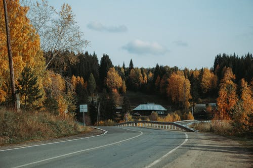 Empty winding asphalt roadway going among trees with colorful foliage and cottages in rural terrain in countryside against cloudy sky