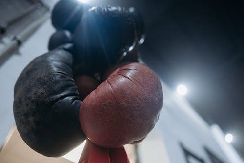 Gratis lagerfoto af boksning, fitnesscenter, hængende