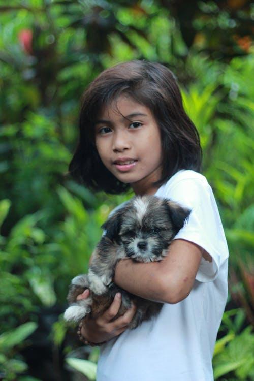 Free stock photo of asian kid, beautiful smile, dog, green