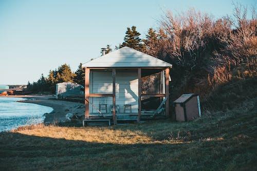 Small wooden cabin on grassy seashore in daylight
