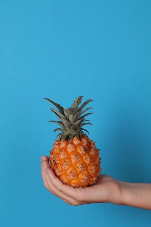 Fruta De Piña En La Mano De Las Personas