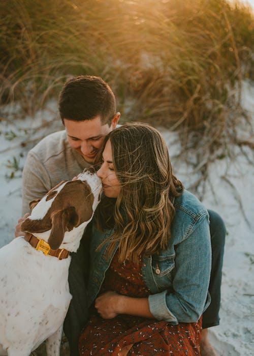 Young couple kissing loyal dog on sandy terrain