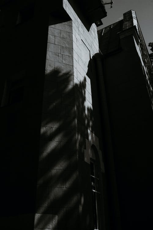 Grayscale Photo of Wall