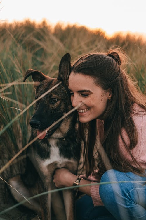 Happy young female owner in casual clothes smiling and hugging adorable loyal German Shepherd dog while spending time together in rural field at sunset