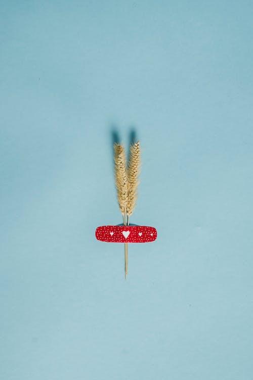 Lollipop Berbentuk Hati Merah Di Permukaan Putih