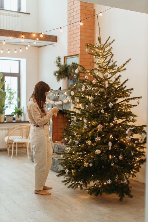 Бесплатное стоковое фото с вечнозеленый, декорации, декорация, день рождения