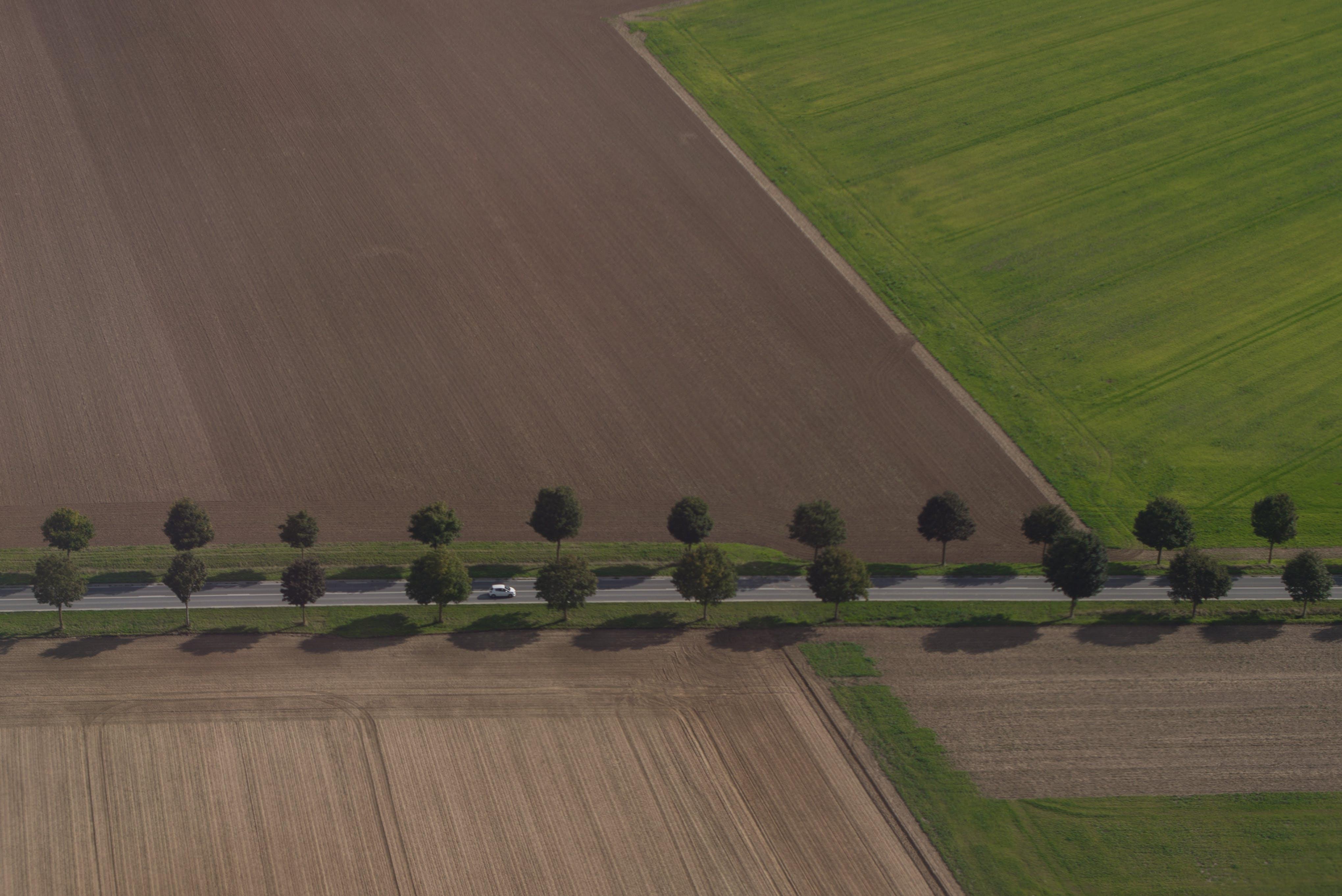 Foto stok gratis alam, angkutan, bayangan, bidang