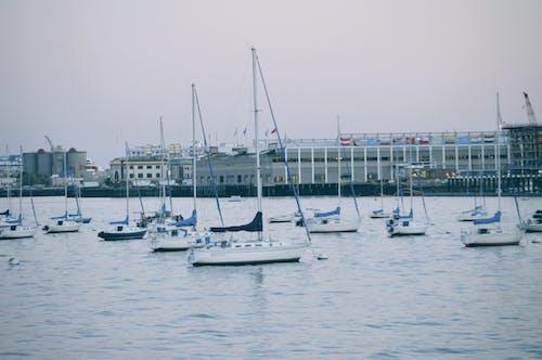 Photos gratuites de bateaux, eau, voilier, voiliers