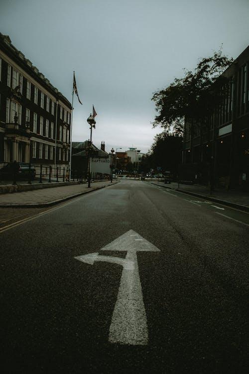 คลังภาพถ่ายฟรี ของ ถนนในเมือง, เจ้าอารมณ์