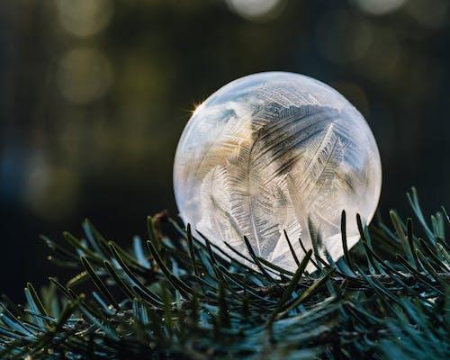 緑の草の上の青と白のボール