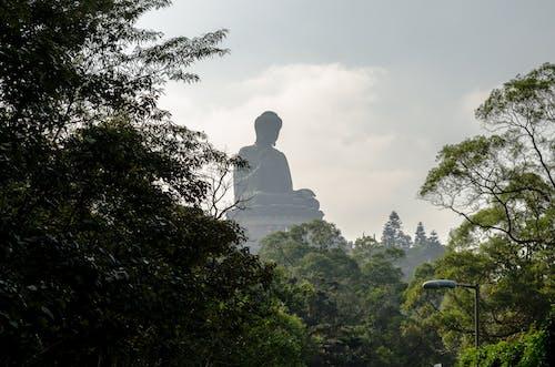 Free stock photo of big buddha, buddha, buddhism