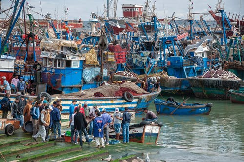 Group of unrecognizable fishermen in casual clothes standing on wooden pier near various old boats before catching fish in sea on cloudy day