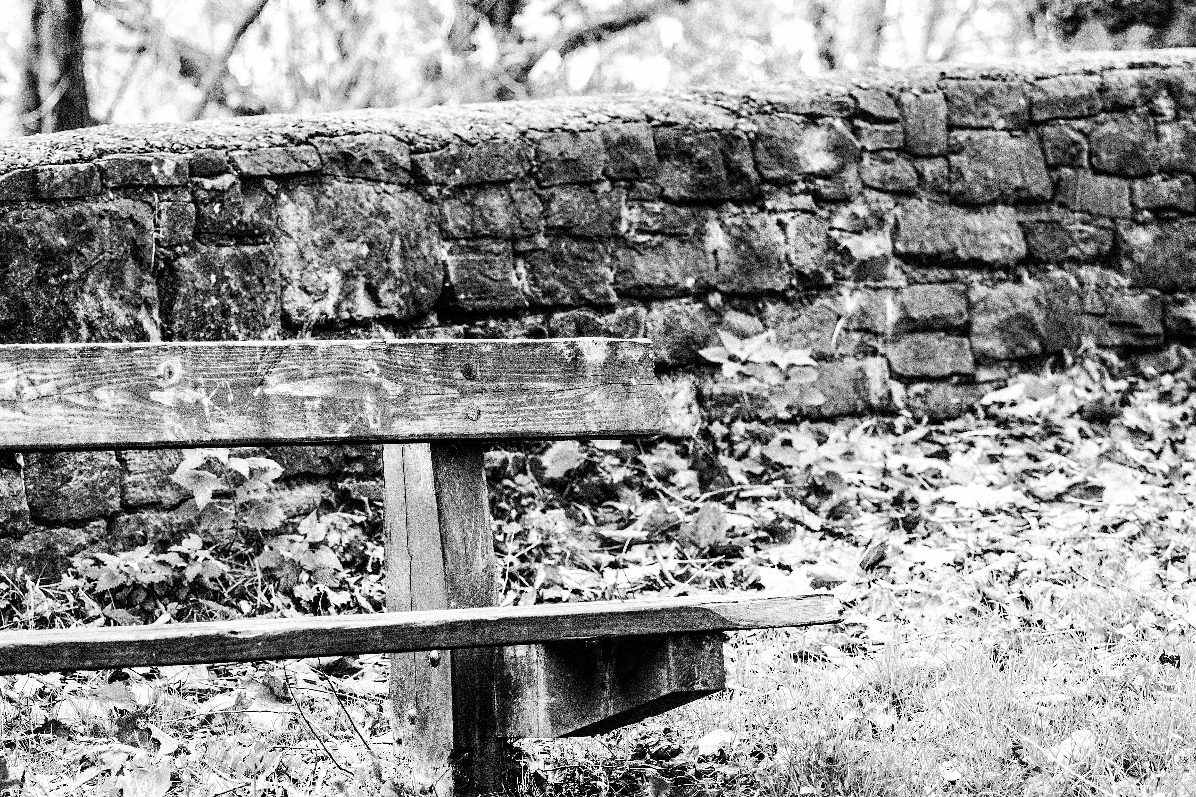 Free stock photo of b&w, bench, black and white, dp