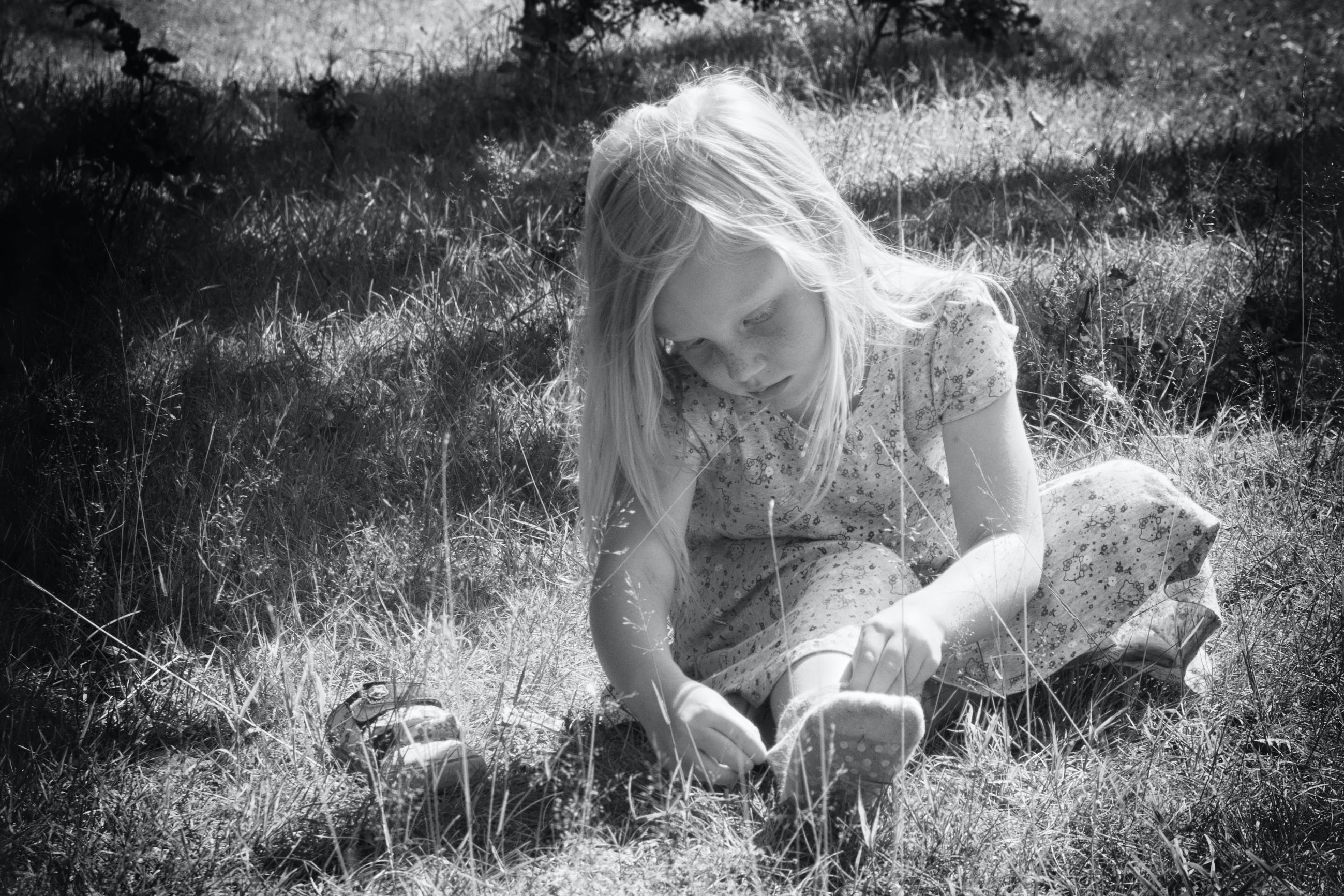 Free stock photo of daisy, dp, girl, grass