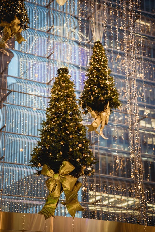 Christmas trees with garlands hanging on ropes near building