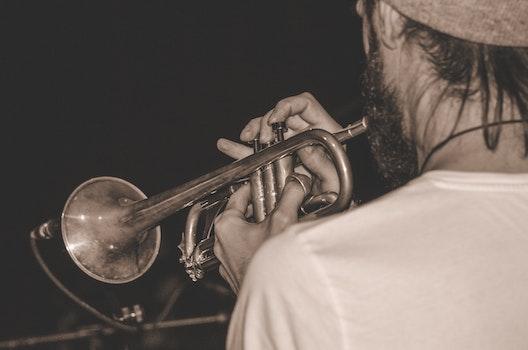 Free stock photo of music, musician, sepia, jazz
