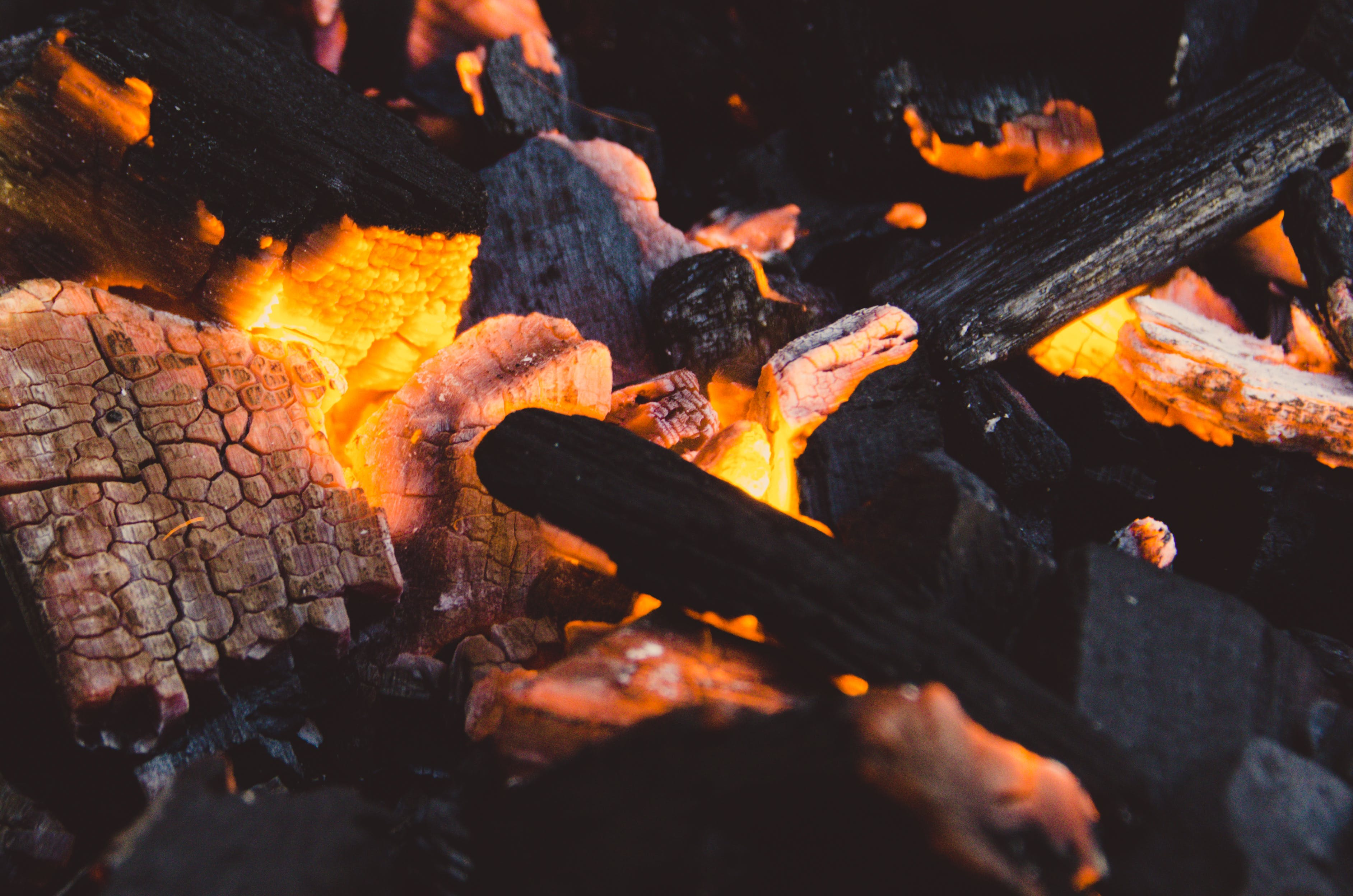 Close-up of Burning Logs