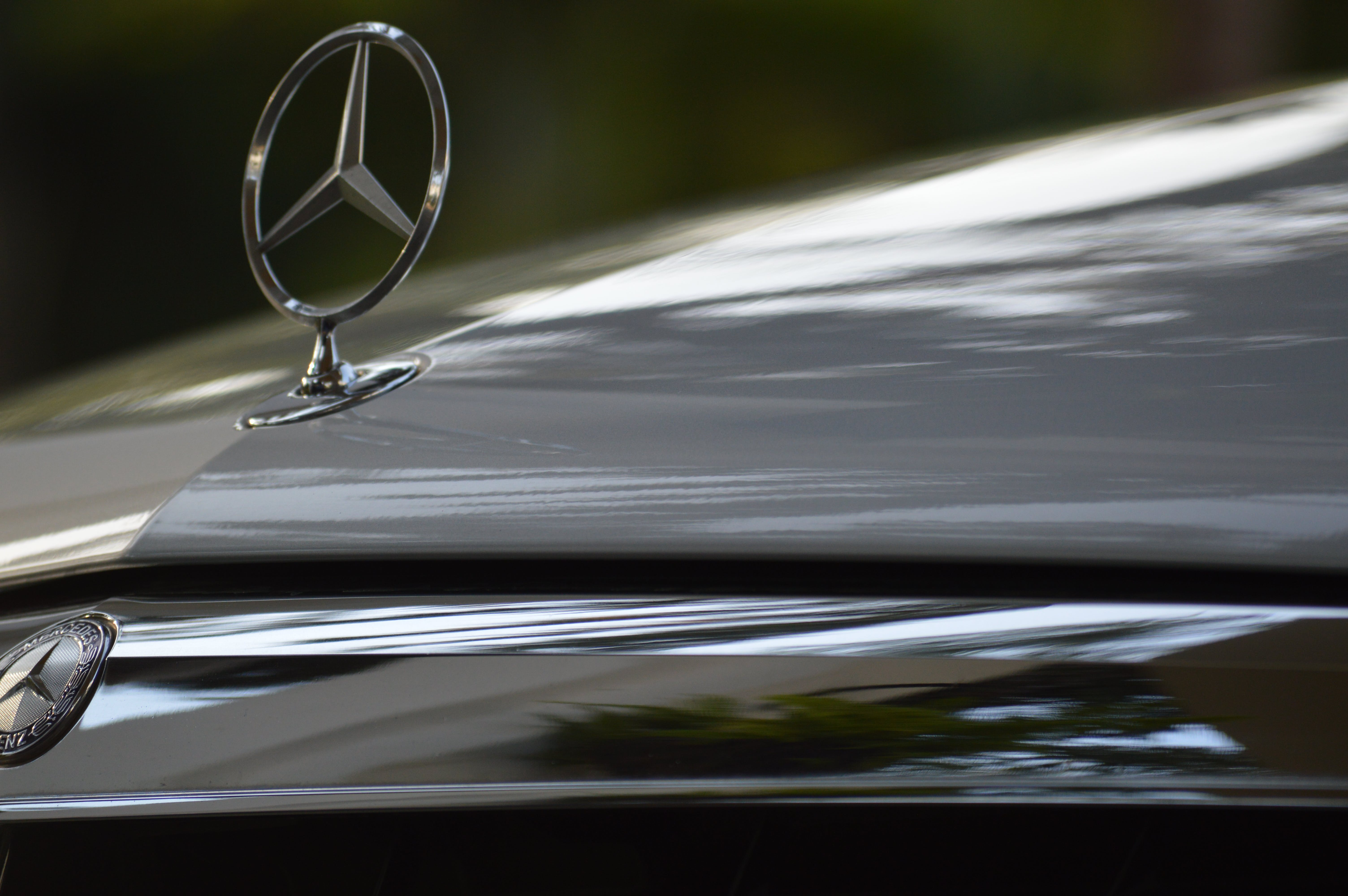 Free stock photo of benz, cars, luxurious, mercedes