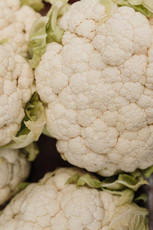 Free stock photo of broccoli, cabbage, cauliflower
