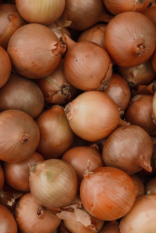 수직 쐈어, 수확, 야채의 무료 스톡 사진