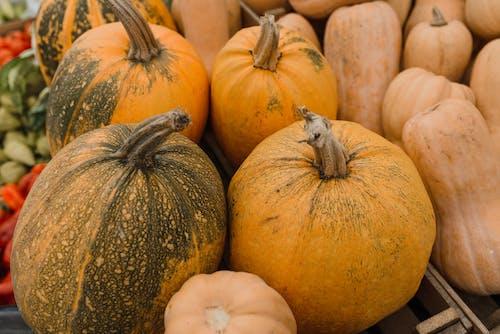 건강한, 수확, 신선한의 무료 스톡 사진