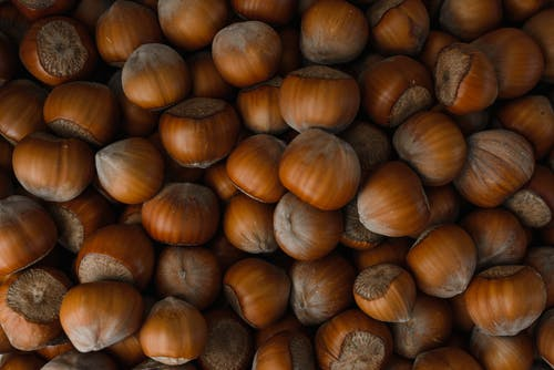 Free stock photo of chestnut, closeup, cooking
