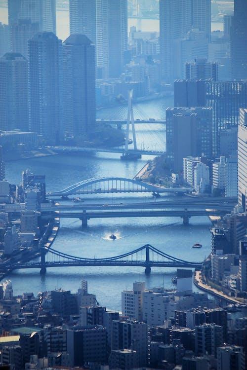 Free stock photo of bridge, building, city