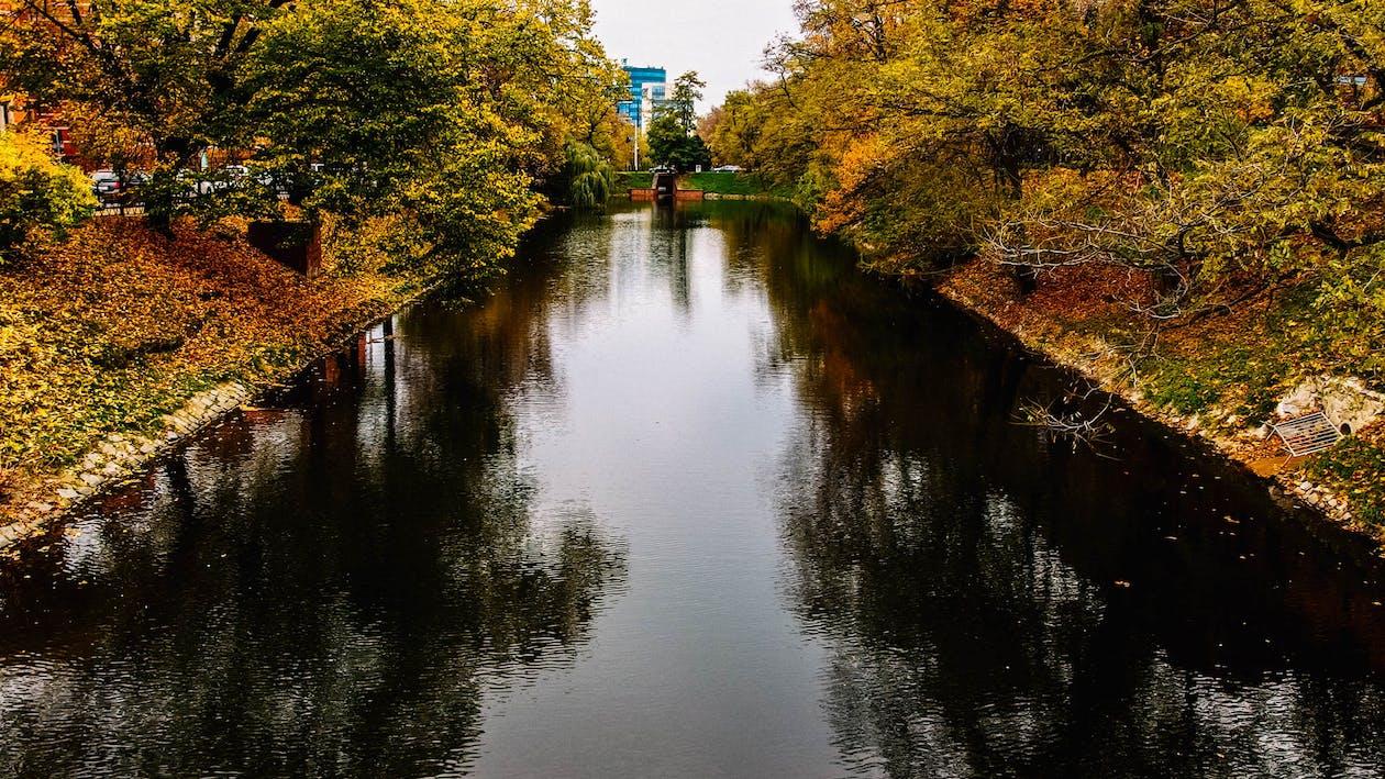 ciutat, Polònia