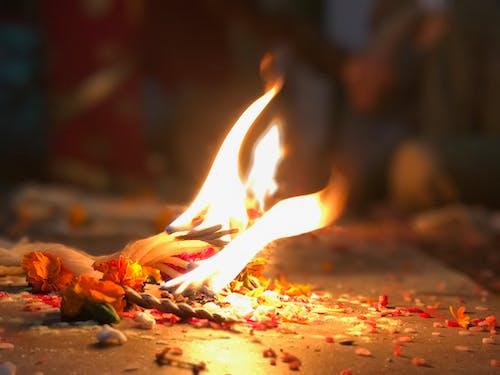 Ảnh lưu trữ miễn phí về nepal, ngọn lửa, tôn sùng, văn hóa