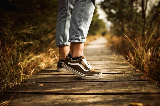 Free stock photo of wood, fashion, person, path