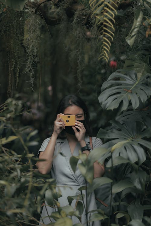 Anonymous female in mask standing near bushes and plants with green foliage while taking photo on analog camera in nature in daytime