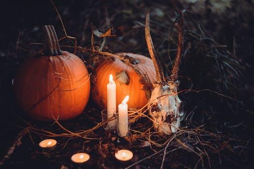 Brown Pumpkin Halloween Decor and Gray Skull at Grass