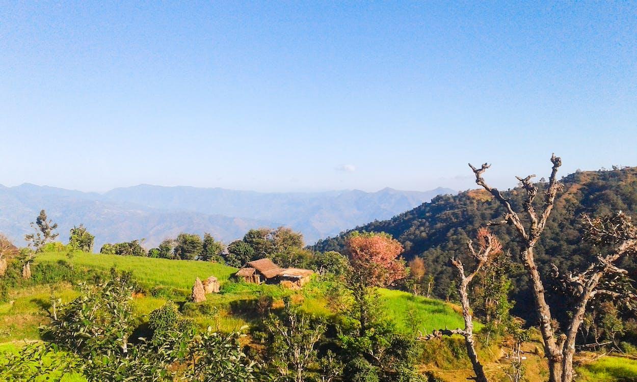 Free stock photo of nature, nepal, royalgcorps