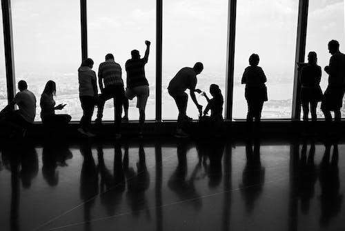 Základová fotografie zdarma na téma čb, lidé siluetají, monochromatický, pohled z vrcholu