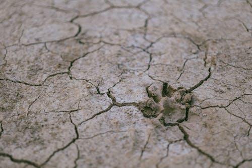 Suelo De Sequía
