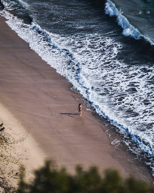 Foto stok gratis air, air biru, basah, berselancar