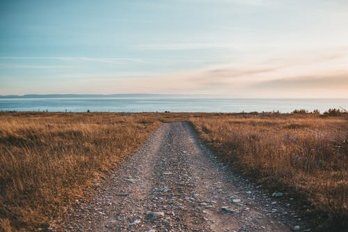 Rough walkway and faded grass against ocean at sunset