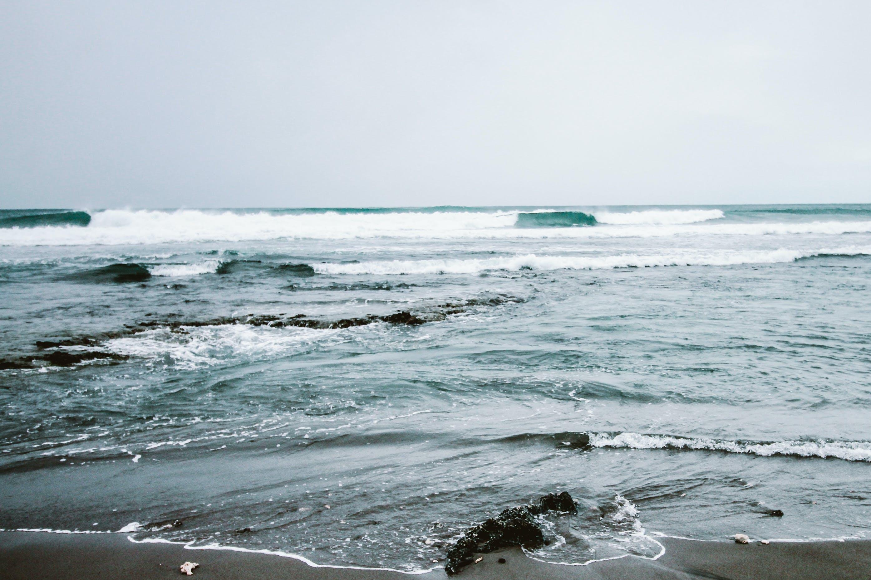 beach, foam, landscape